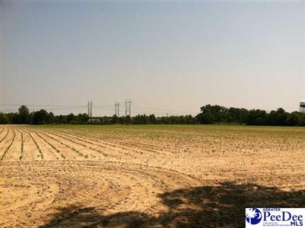 Photo of Development N CASHUA, FLORENCE, SC 29501